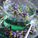 Everything You Need To Know About Herbal Tea (And More!)